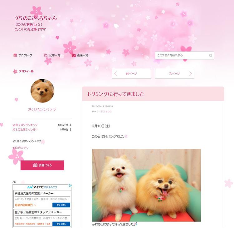 うちのこさくらちゃんのブログ