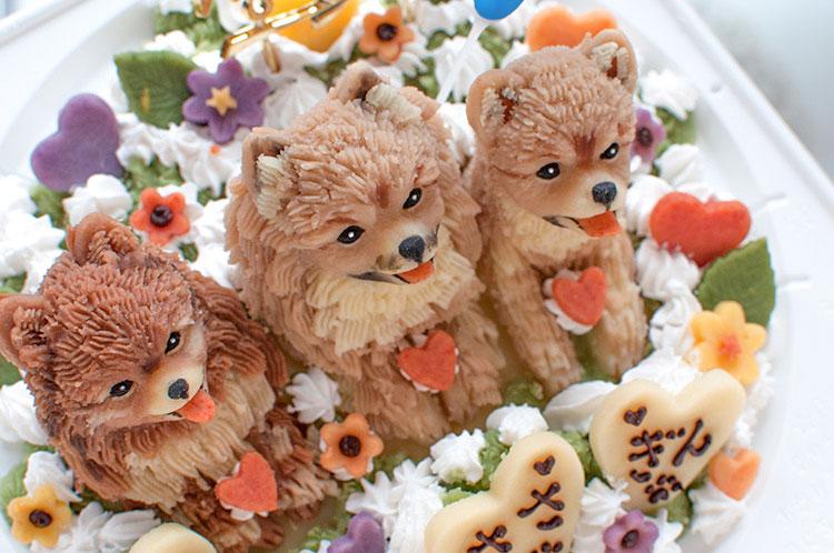 ポメラニアン3匹の誕生日ケーキ