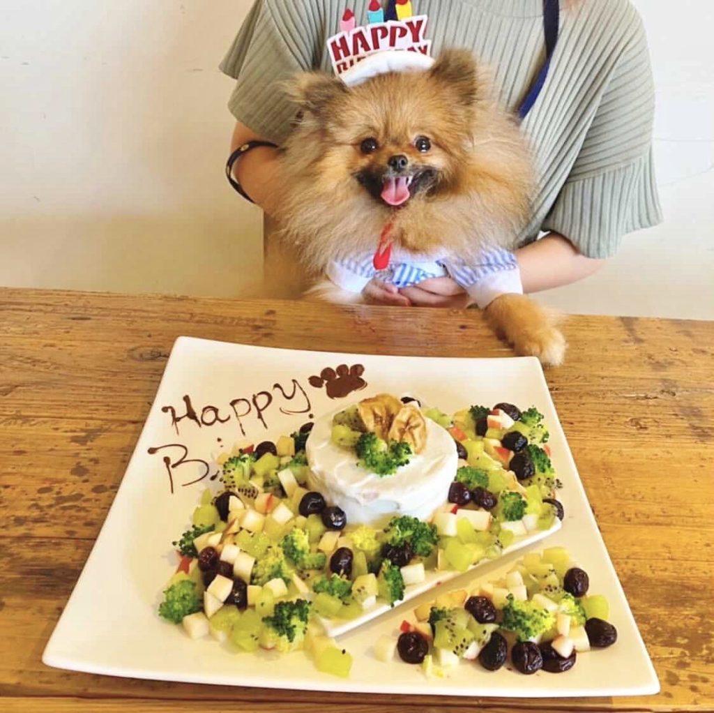 横浜GLOWの犬用誕生日ケーキ